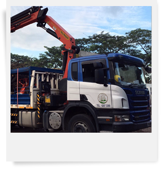 Lorry Cane Rental
